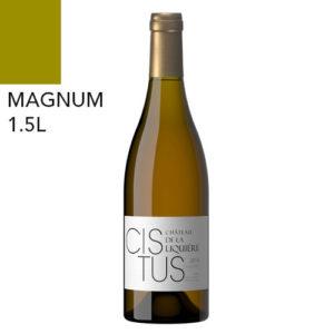 magnum cistus blanc